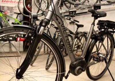 E Bike Probe fahren, E Bike Leasing, E Bike Fachmann